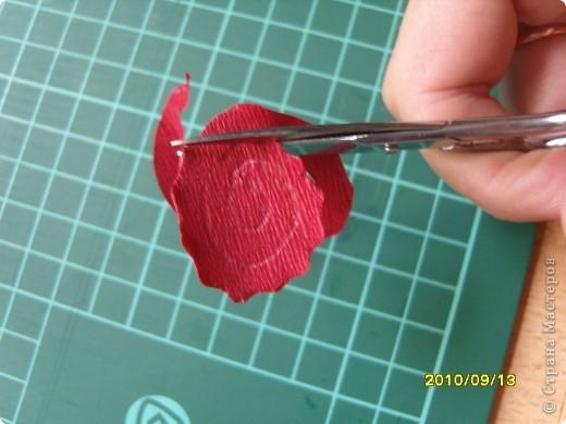 Как с бумаги для квиллинга сделать розу 172