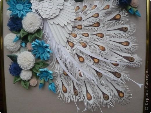 Вдохновленная увиденными в Стране Мастеров работами  Юлены, Ольги Ольшак и других мастериц  сделала подобного павлина. Совместила две техники - бумагопластику и квиллинг. Очень понравилось делать птичку, а с цветами кажется переборщила фото 3
