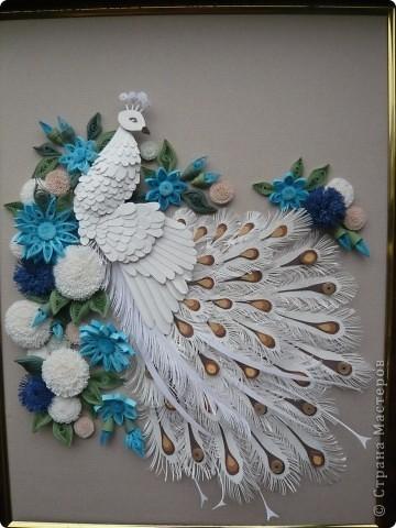Вдохновленная увиденными в Стране Мастеров работами  Юлены, Ольги Ольшак и других мастериц  сделала подобного павлина. Совместила две техники - бумагопластику и квиллинг. Очень понравилось делать птичку, а с цветами кажется переборщила фото 1