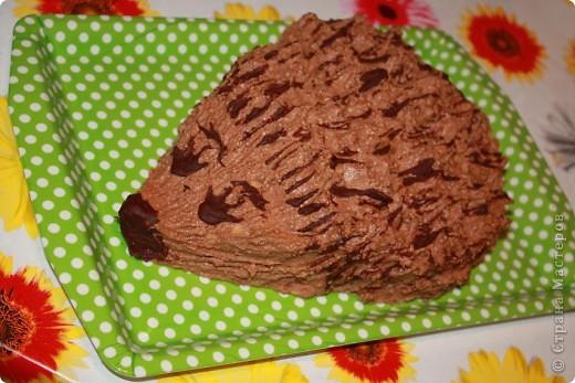 """Торт """"Ежик"""" сынульке на День рождения. фото 1"""