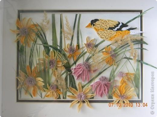 Эта работа - память об ушедшем лете. Сделала ее за неделю, будучи в отпуске. Цветы и птица - квиллинг. Трава - бумага ханди. Немного сухоцветов. фото 1