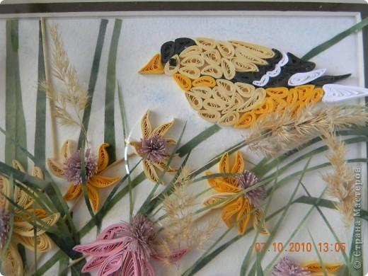 Эта работа - память об ушедшем лете. Сделала ее за неделю, будучи в отпуске. Цветы и птица - квиллинг. Трава - бумага ханди. Немного сухоцветов. фото 2