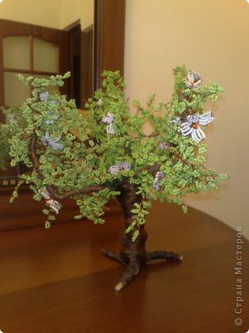 дерево.. фото 1