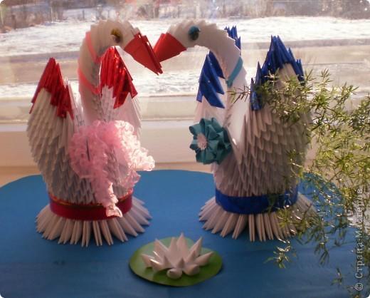 Наши лебеди