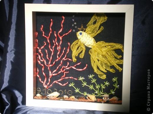 Наконец закончила свой аквариум!!!Хочу выразить благодарность Татьяне Улановой по её видео-урокам я вышивала аквариум http://kp.ru/video/425291/ !И ещё одна благодарность  lyna http://stranamasterov.ru/blog/12906  за то что она  посоветовала посмотреть эти видео-уроки и дала адрес странички!!! фото 1