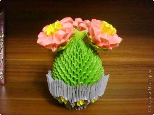 Вот и мой кактус. фото 1