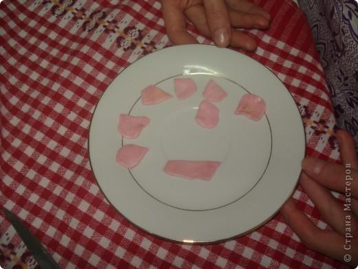 Вот такое вкусное и красивое блюдо мы готовим в 6 классе. фото 8