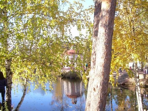 По всему парку расположены такие кормушки для птиц. фото 8