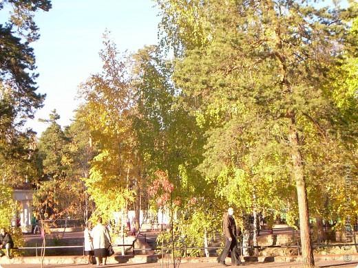 По всему парку расположены такие кормушки для птиц. фото 3