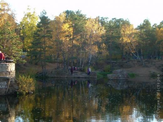По всему парку расположены такие кормушки для птиц. фото 12