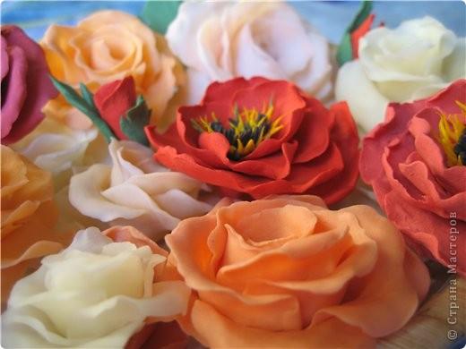 Поделка изделие Флористика искусственная Лепка цветы из холодного фарфора Фарфор холодный фото 5