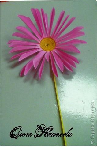 Картина панно рисунок Мастер-класс Квиллинг Розовая композиция и mini МК Картон фото 15
