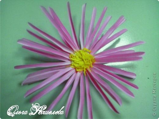 Картина панно рисунок Мастер-класс Квиллинг Розовая композиция и mini МК Картон фото 21