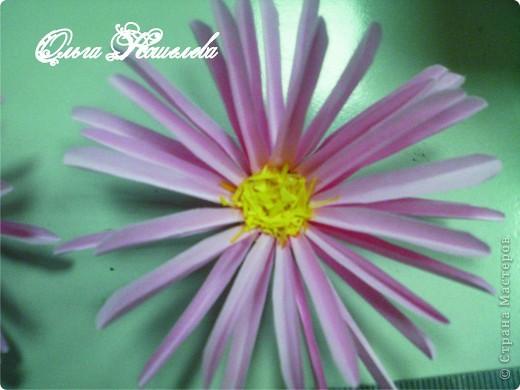 Картина панно рисунок Мастер-класс Квиллинг Розовая композиция и mini МК Картон фото 24