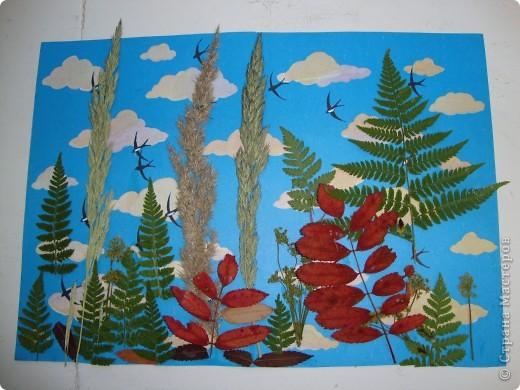 В осеннем лесу. фото 3