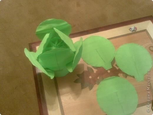 Костюм капусты из бумаги для девочки своими руками