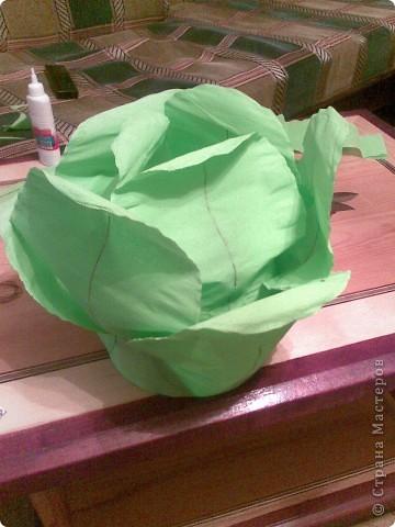 Вот наша шапочка капусты готова. фото 1
