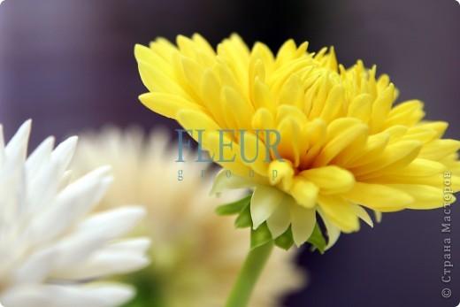 Искусство керамической флористики Fleur.