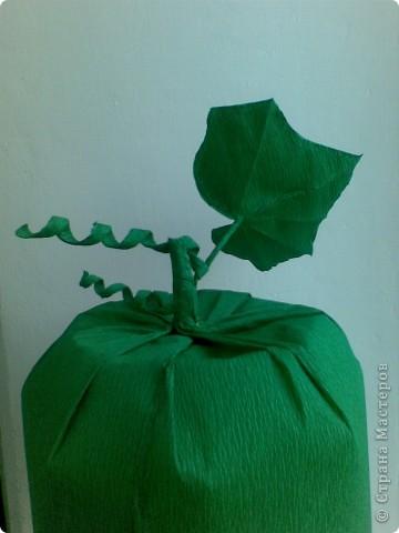 А вот и наша шапочка огурчика. фото 3