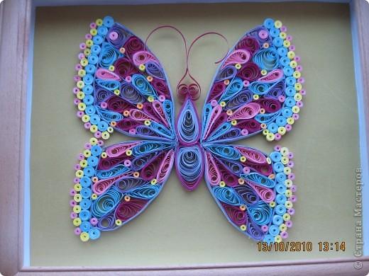 Вот моя перваяя бабочка! фото 2