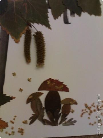 """поделка в садик. делала с Максимом (4 года). сначала Максим нарисовал ствол и веточки, потом приклеивали листики и почки, грибочки """"посыпали"""" раскошившимися  почками фото 2"""