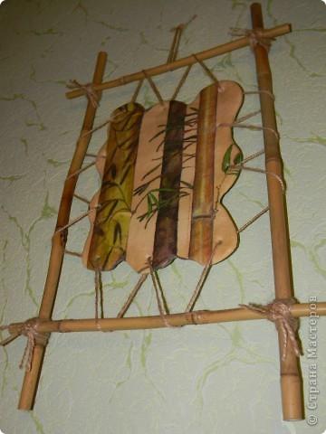 Бамбук фото 2