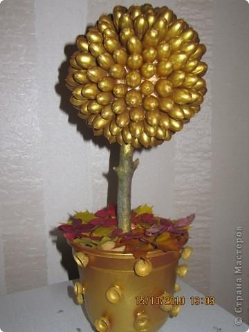 золотое деревце