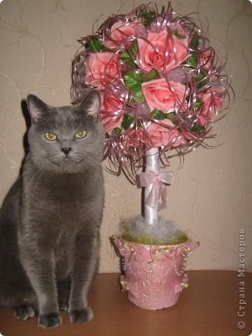 После свадьбы остались украшения, решила их переделать и получилось такое деревце из роз. фото 3