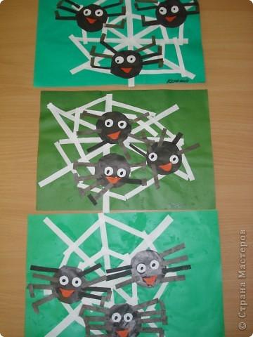 Паучки фото 1