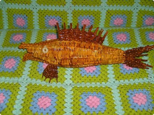 Увидела на сайте таких рыб и тоже захотелось сделать.  фото 1