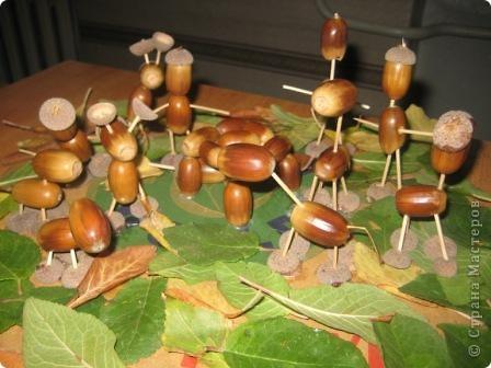дискотека на лесной полянке...)))) фото 1
