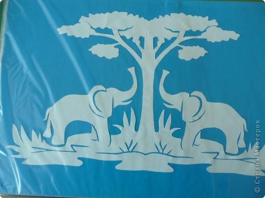 слоники, кошечки... фото 1