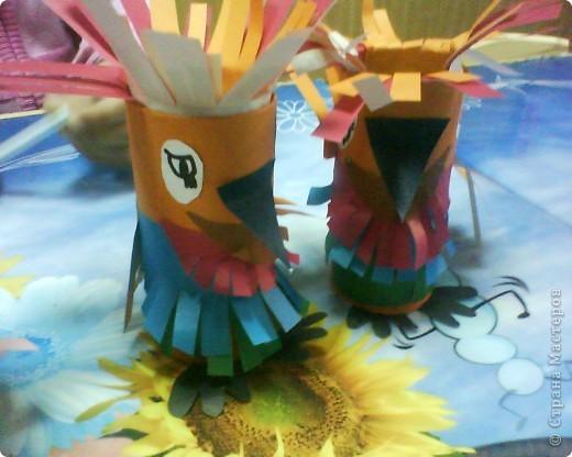 Невиданные попугаи фото 2