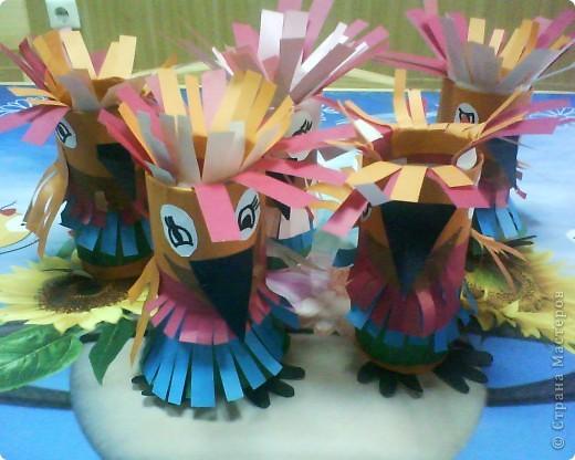 Невиданные попугаи фото 4