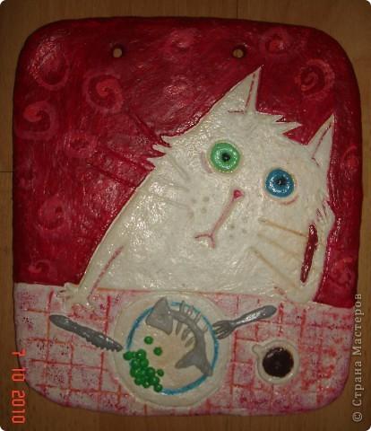 Соленые кошки фото 2