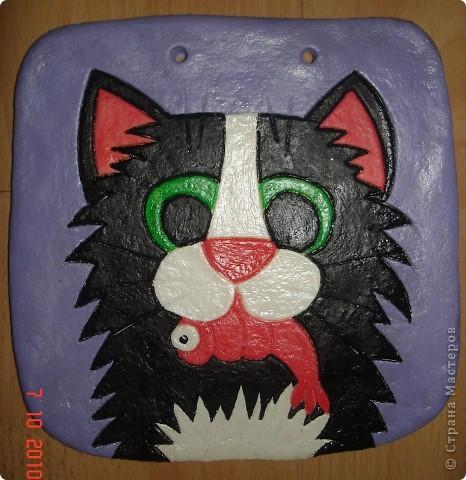 Соленые кошки фото 1