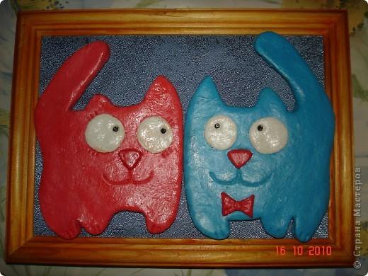 Соленые кошки фото 3