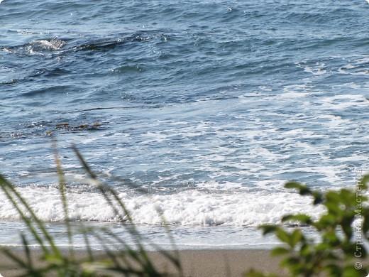 Находка. Море (17.10.10) фото 1