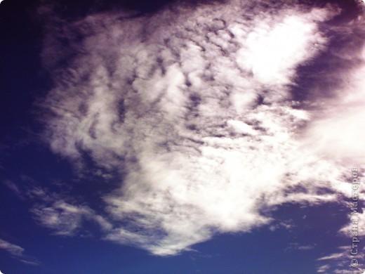 шикарное небо фото 3