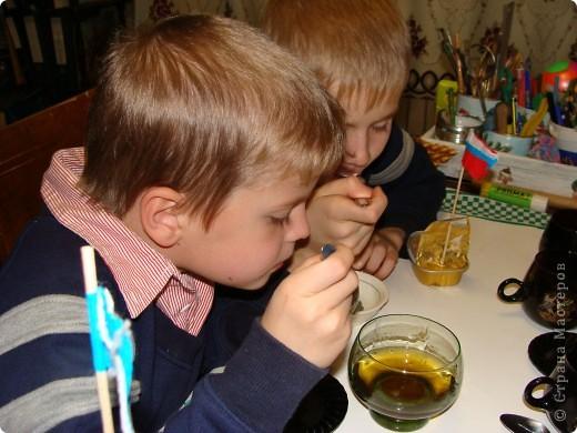 Я с первого занятия этого года пообещала мальчишек накормить медом из одуванчиков. Конечно, это очень заинтриговало мальчишек, тем более, что мама не смогла на этот вопрос им ответить.  И сегодня настал такой момент. Пчелы живут у ульях – это им известно. А где живут осы?  фото 13