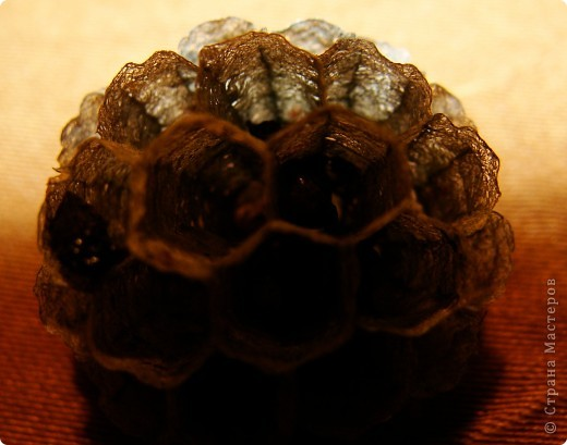 Я с первого занятия этого года пообещала мальчишек накормить медом из одуванчиков. Конечно, это очень заинтриговало мальчишек, тем более, что мама не смогла на этот вопрос им ответить.  И сегодня настал такой момент. Пчелы живут у ульях – это им известно. А где живут осы?  фото 12