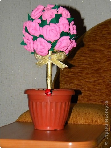 Вот оно,моё первое розовое деревце! фото 1