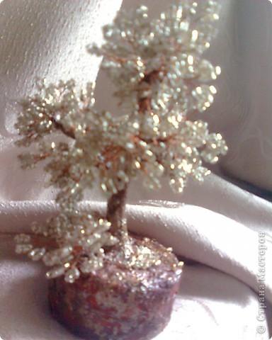 моё деревце... фото 1