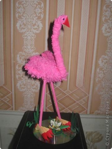 Наш розовый фламинго, фото 1
