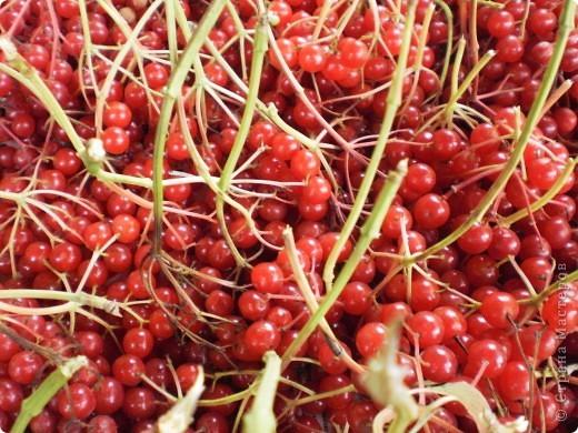Внутри у ягоды живёт сердечко фото 1