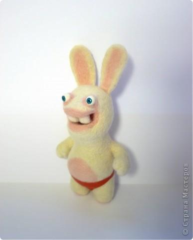 Бешенный заяц фото 1