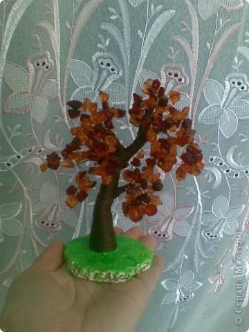 Вот такое янтарное дерево у меня получилось. Делала первый раз, поэтому не знаю все ли я правильно сделала, а может чего-то не хватает? Приму любые замечания и критику. фото 2