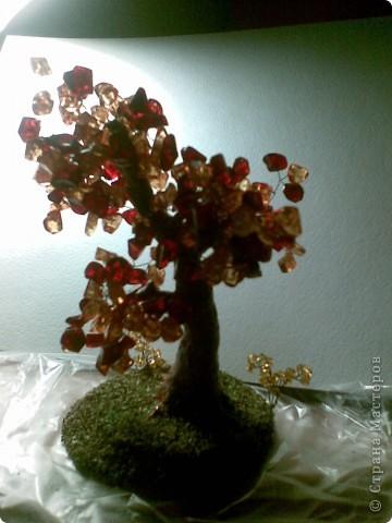Вот такое янтарное дерево у меня получилось. Делала первый раз, поэтому не знаю все ли я правильно сделала, а может чего-то не хватает? Приму любые замечания и критику. фото 6
