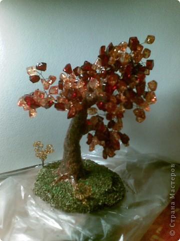 Вот такое янтарное дерево у меня получилось. Делала первый раз, поэтому не знаю все ли я правильно сделала, а может чего-то не хватает? Приму любые замечания и критику. фото 7