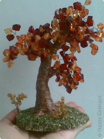 Вот такое янтарное дерево у меня получилось. Делала первый раз, поэтому не знаю все ли я правильно сделала, а может чего-то не хватает? Приму любые замечания и критику. фото 1